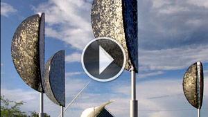 Wind Leaves Video