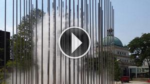 cloudArbor-video-300