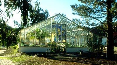 greenhouse-400
