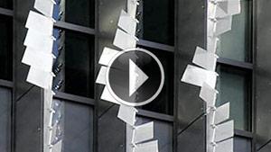 featherWall-video