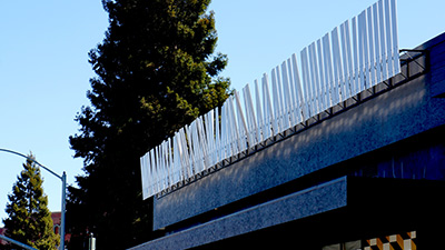 Erratic-Fence-400